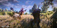 image_the_witcher_3_wild_hunt-25218-2651_0003